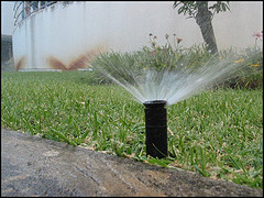SprinklerHeadbyzone41onflickr