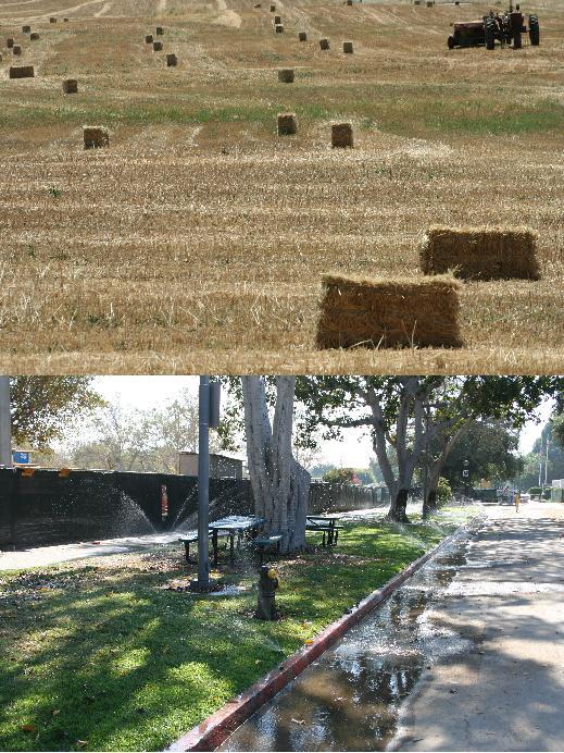 NMG - Cities vs Farms